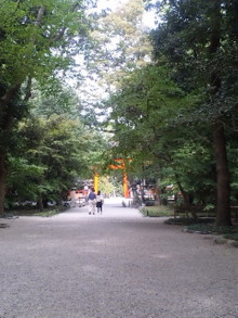 京都美容矯正 ナチュールミューのブログ