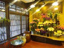 京都美容矯正 -fece&bodytherapy-  ナチュールミューのブログ